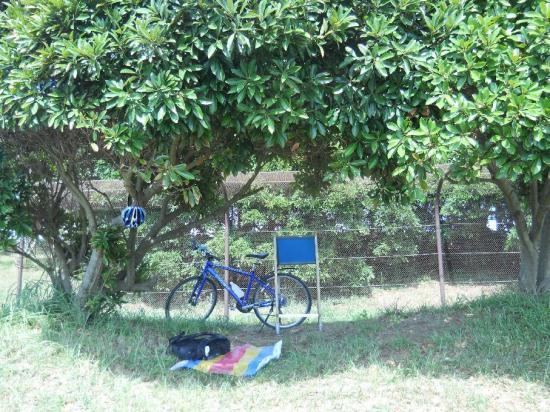 サイクリング7-24 (6)