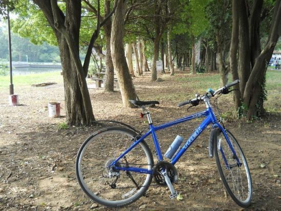 サイクリング8-7 (1)