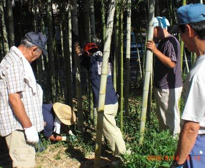 地区夏祭り竹