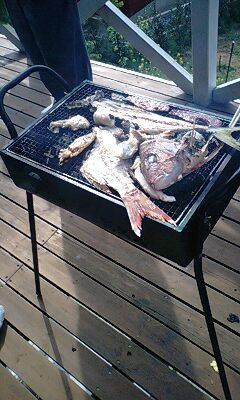 鯛とヤズ炭火焼