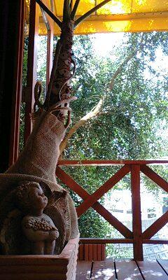 キュイール 木