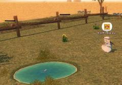 サブ子農場にも池