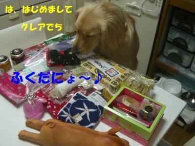 20110326-14.jpg