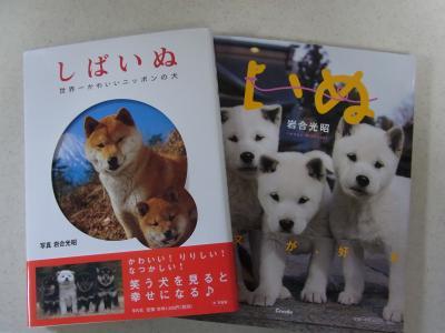 2011080904.jpでg