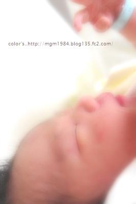 IMGP3789.jpg
