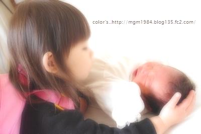 IMGP3852.jpg