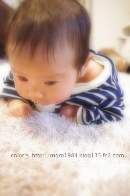 IMGP4239.jpg