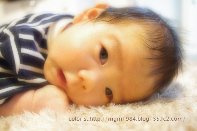 IMGP4244.jpg