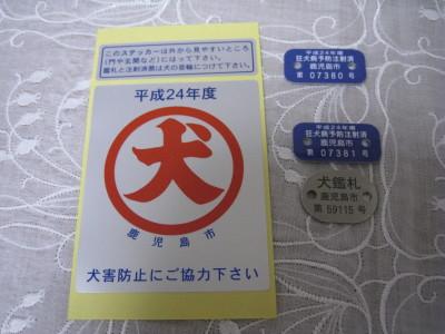 IMG_20120419_005.jpg