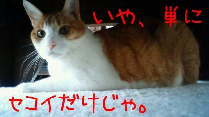 200905241215001.jpg