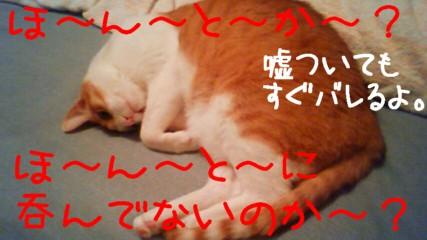 2_20090430215137.jpg