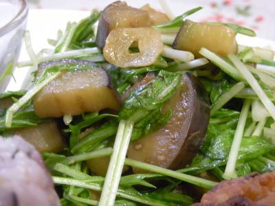 水菜とナスの温サラダ_convert_20090610134239