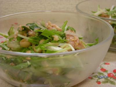 水菜とシーチキンの梅サラダ_convert_20090613163537