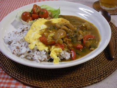 雑穀オムカレーでワンプレート2_convert_20090903131046