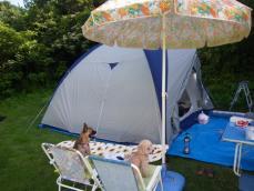 キャンプー
