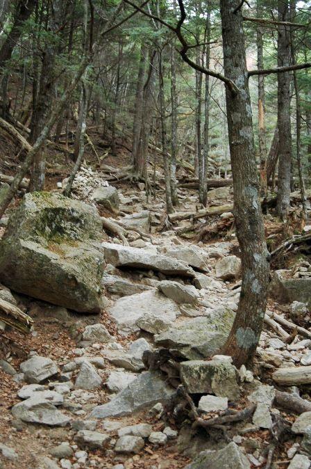 20111030-24登山道