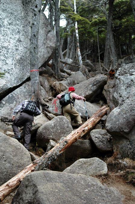 20111030-25登山道3