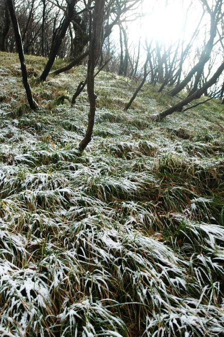 20111126-27北面の雪