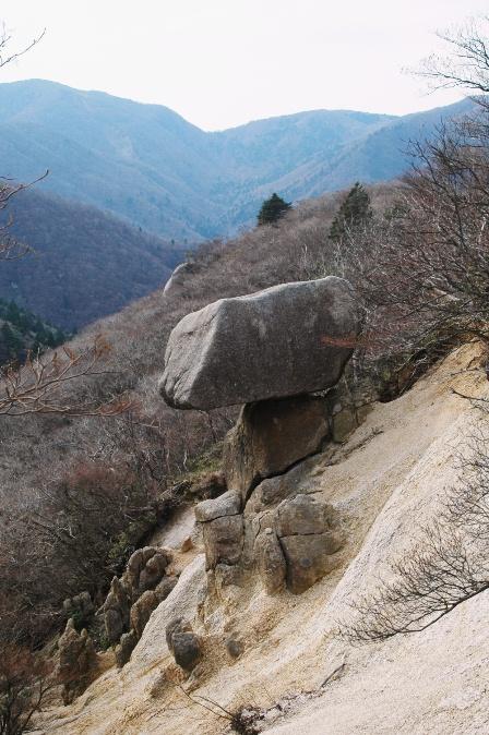 20111127-16きのこ岩?