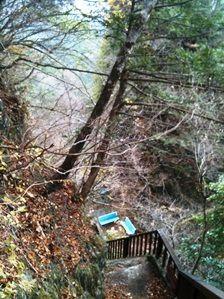 20111216-07階段とベンチ