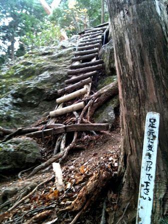 20111216-08丸太のはしご