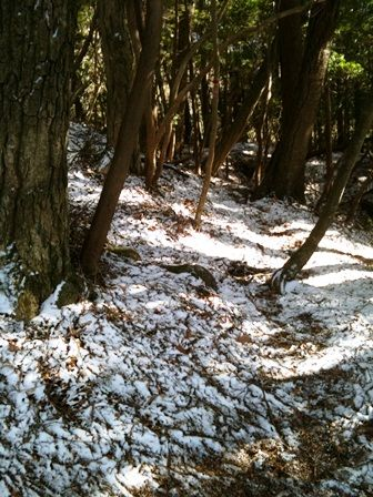 20111216-22雪