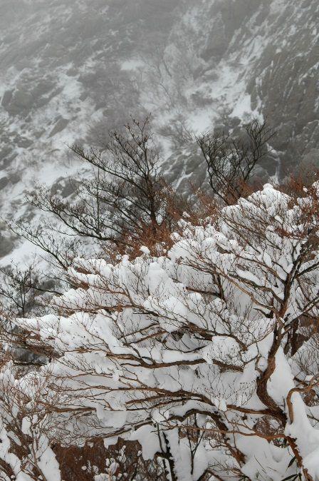 20120109-00扉・雪三昧