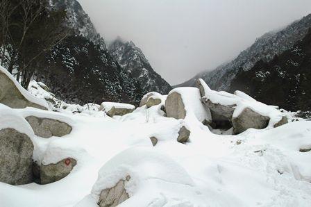 20120109-20雪もっさり
