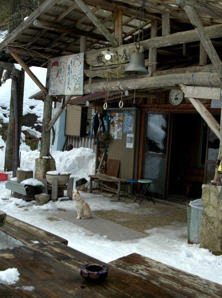 20120109-46わんこ留守番2