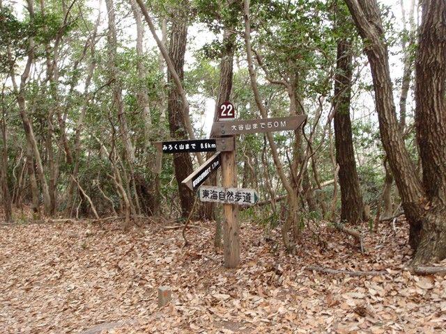 20120115-12 尾根22番