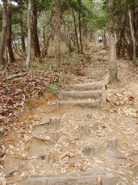 20120115-15 最後の階段