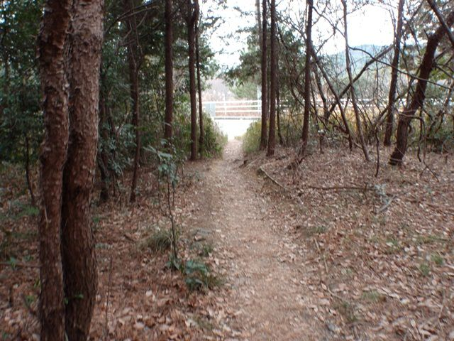 20120115-30 下山