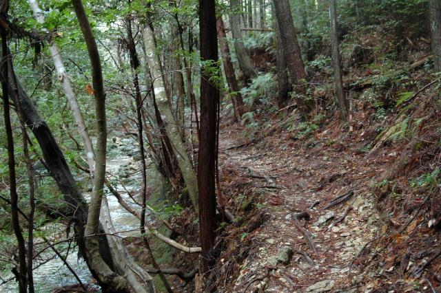 20120122-08歩きやすい道