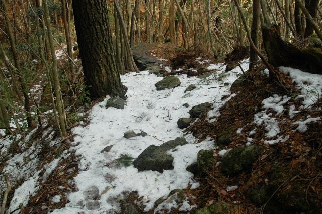 20120122-23雪