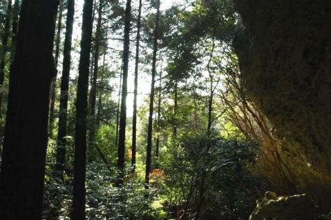 20120122-43鬼岩午後の日差し