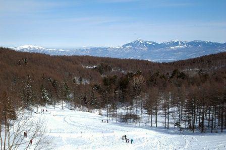 20120205-12八ヶ岳