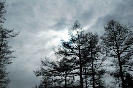 20120205-41曇ってきた