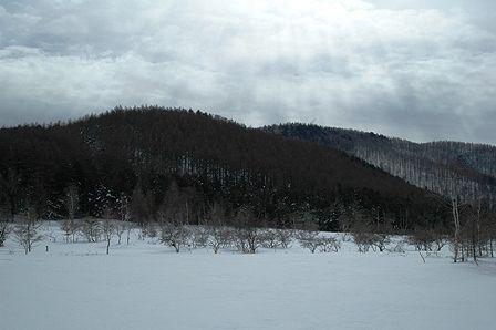 20120205-47モノトーン