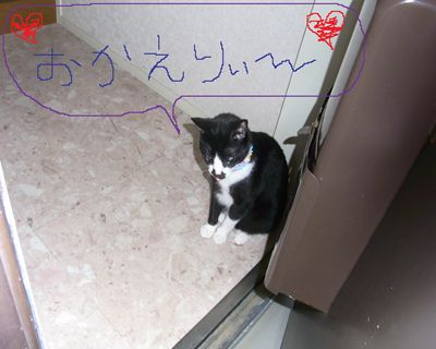 ken24_R.jpg