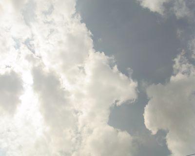 natu2_R.jpg