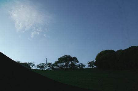 IMGP4708-1.jpg