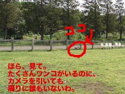20110514-2.jpg