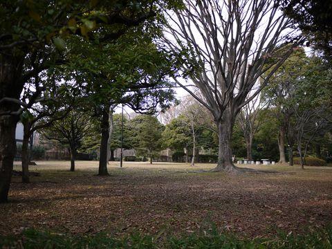 20120118_16.jpg