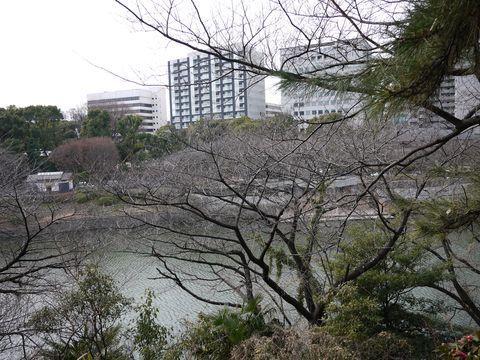 20120118_24.jpg
