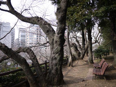 20120118_26.jpg