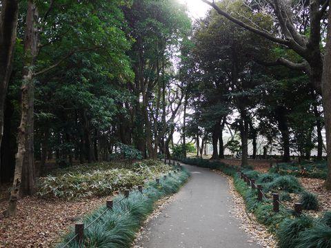 20120118_32.jpg