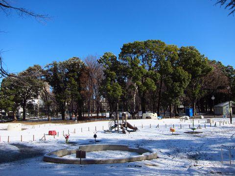 20120124_04.jpg