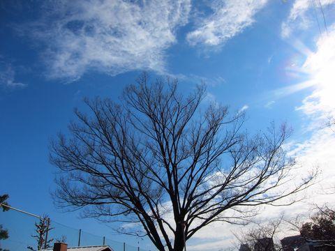 20120124_05.jpg