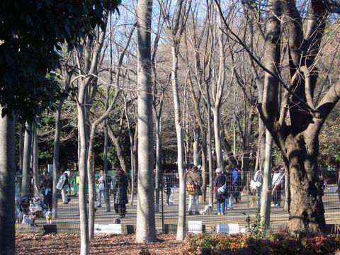 20120219_24.jpg