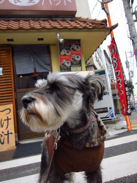yakumaru_20120213171835.jpg